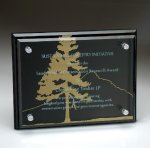 Black Glass Plaque with Glass Layer Square Rectangle Awards