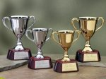Trophy Cups with Piano Finish Wood Base Volleyball Trophy Awards