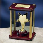 Brass Star Enclosed in Glass Box Wood Cast Awards